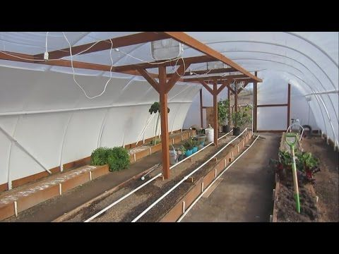Geothermal Greenhouse It Worked It Really Worked Youtube Aquaponics Aquaponics System Greenhouse