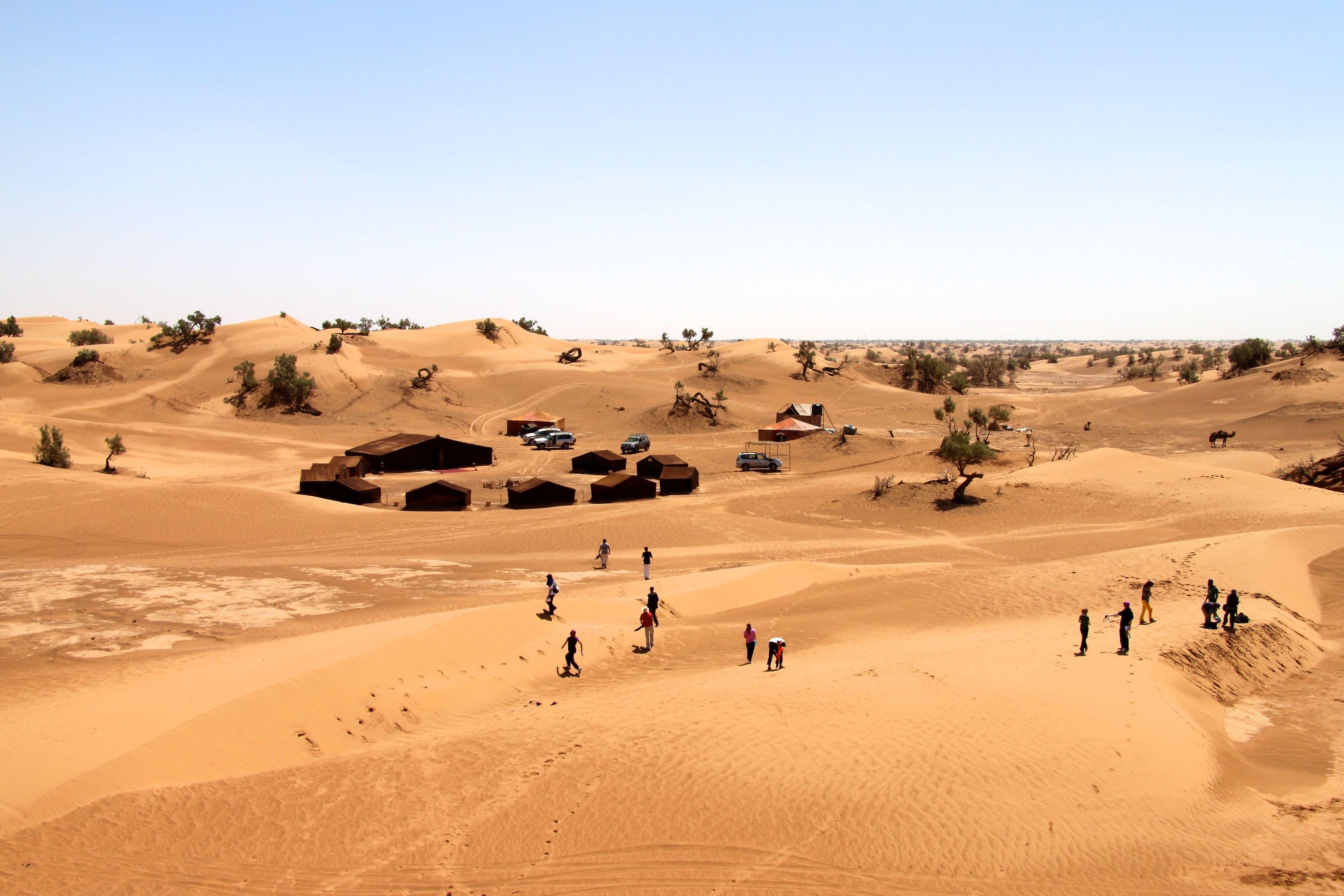 Hd Wallpaper Person Walking On Desert Man Standing In The Middle Of Desert Wallpaper Flare