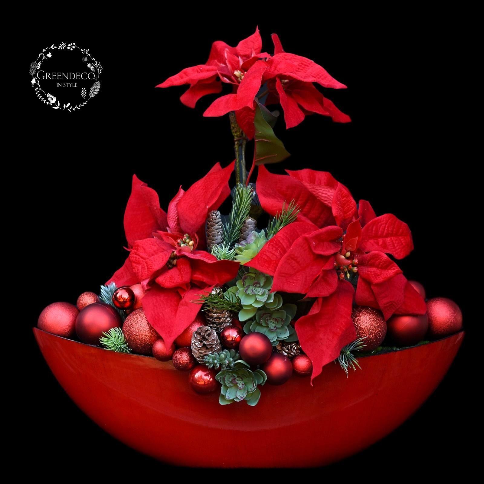 Gwiazda Betlejemska Poinsettia Christmas Decorations Christmas Time Christmas