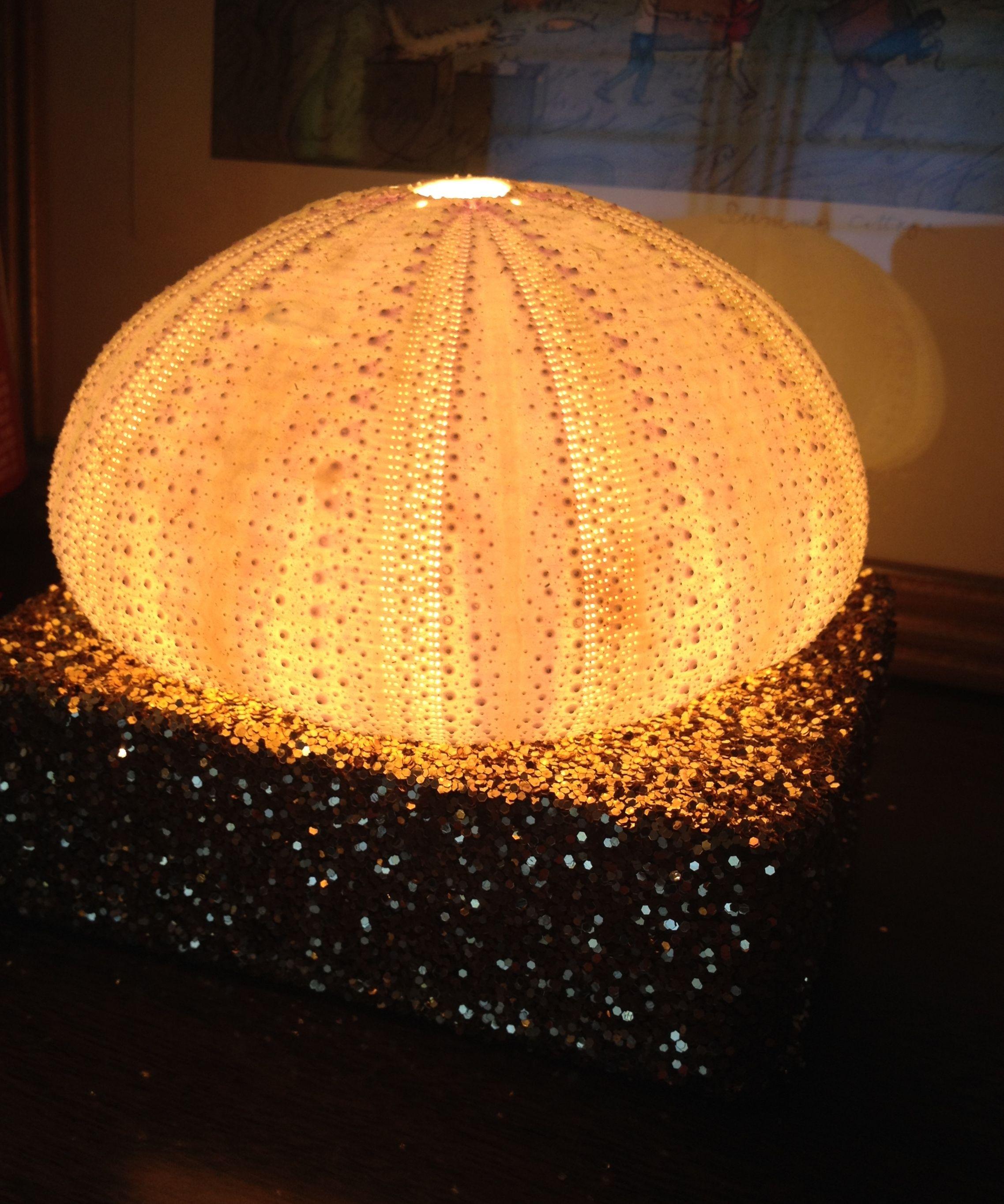 Diy Glitter Sea Urchin Night Light The Domestic Junkies