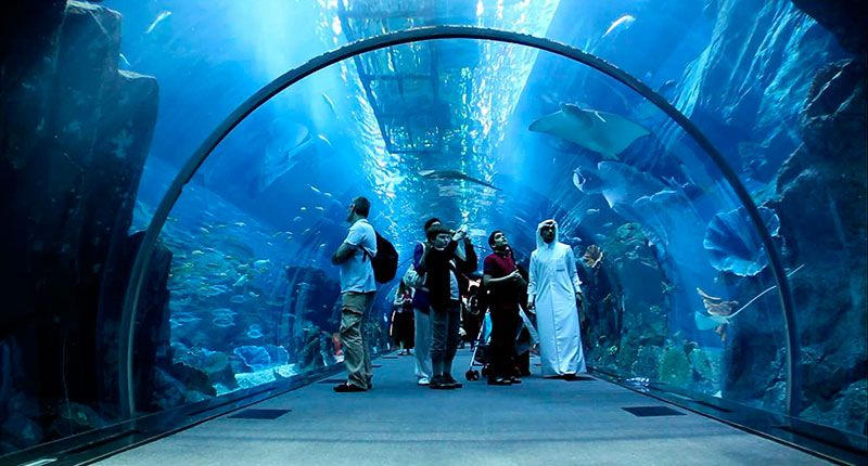Picturesrichdubai PLACES Pinterest Tourism - 26 amazing photos that will make you want to visit dubai
