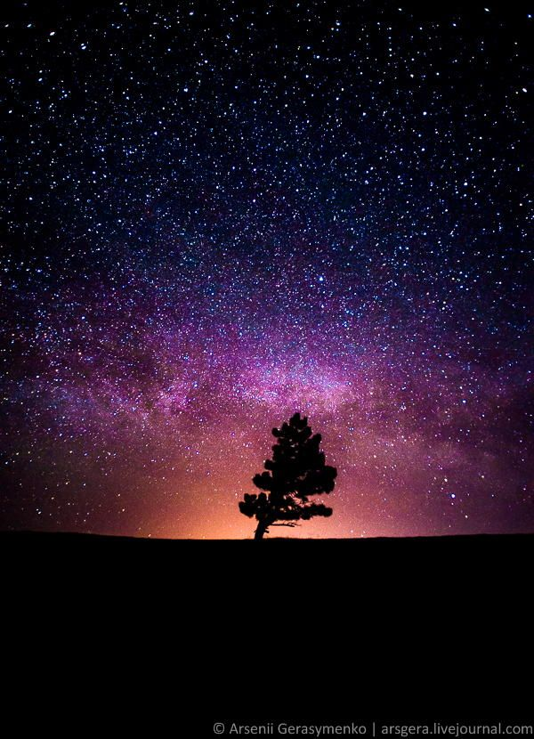 Space: Milky Way, Stars and the Tree ; Captured on Ai-Petri Mountain in Crimea