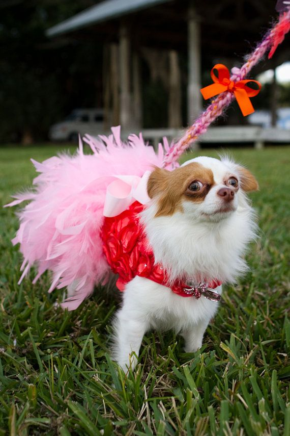Coral and Pink Rosette Feather Harness Dog Dress by KOCouture, $350.00