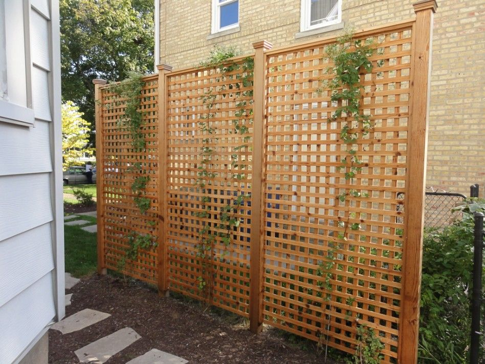 Backyard screens outdoor home design ideas with for Lattice screen fence