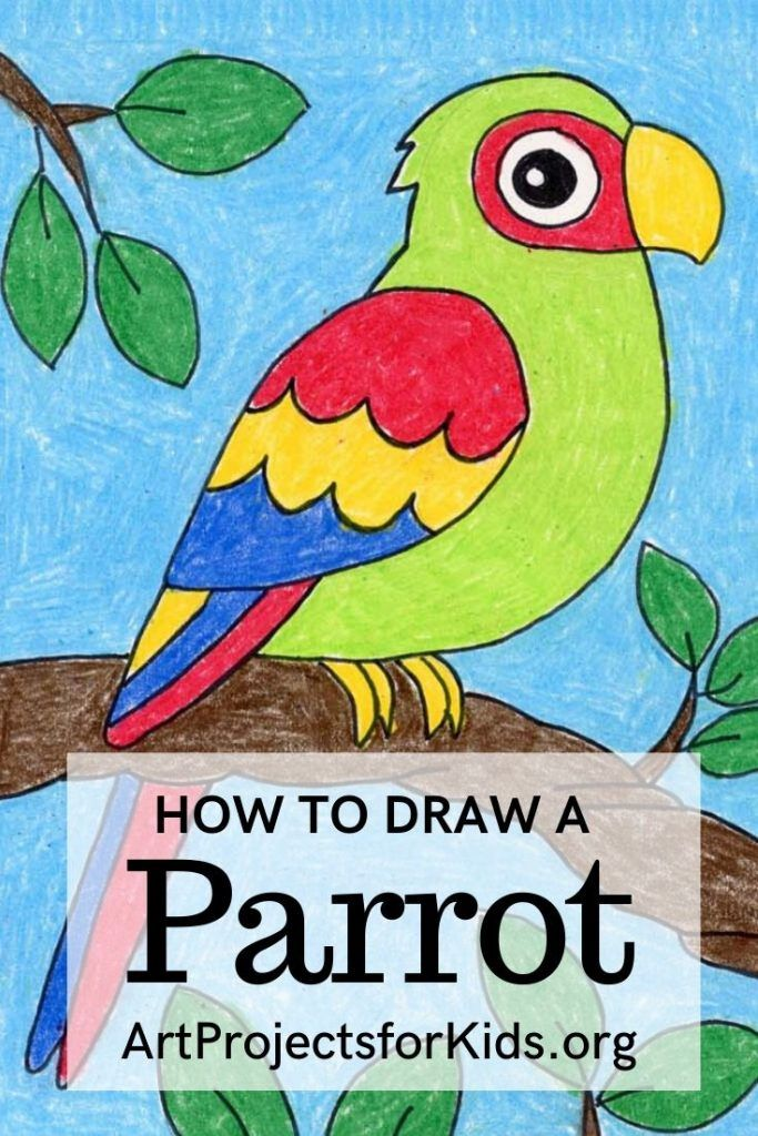 How to Draw a Parrot · Art Projects for Kids