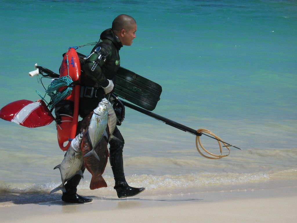 spearfishing lanikai beach oahu hawaii oct 2006 oahu