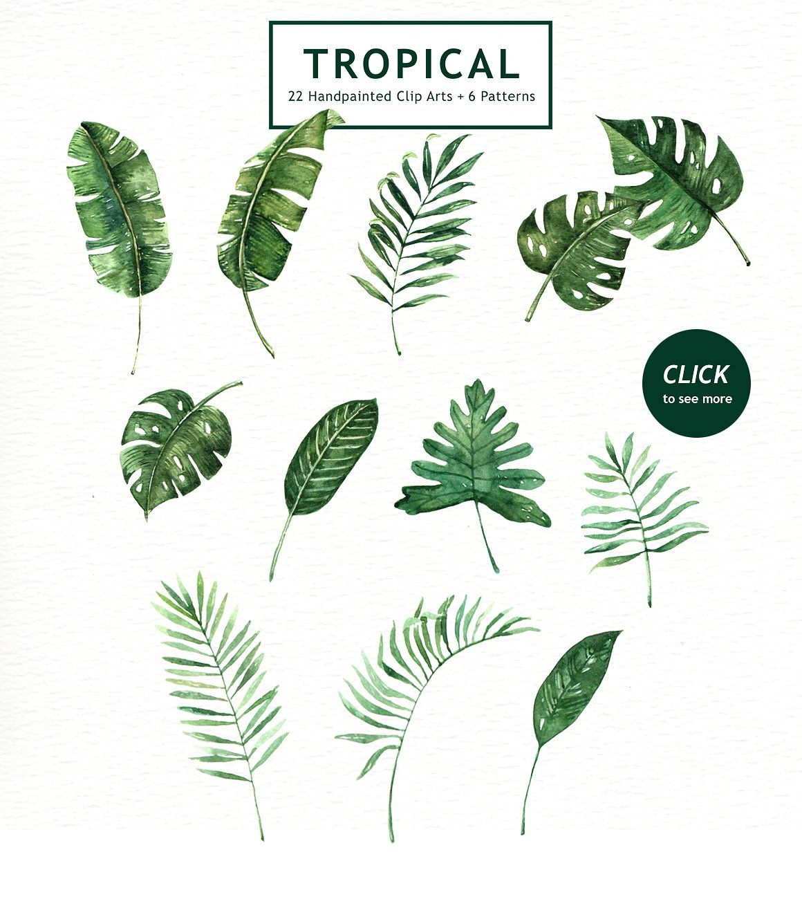 Tropical Leaves Watercolor Clipart Watercolor Leaves Watercolor Flowers Watercolor Clipart Rainforests are forests characterized by high and continuous rainfall, with annual rainfall in the case of tropical rainforests between 2.5 and 4.5 metres (98 and 177 in). pinterest