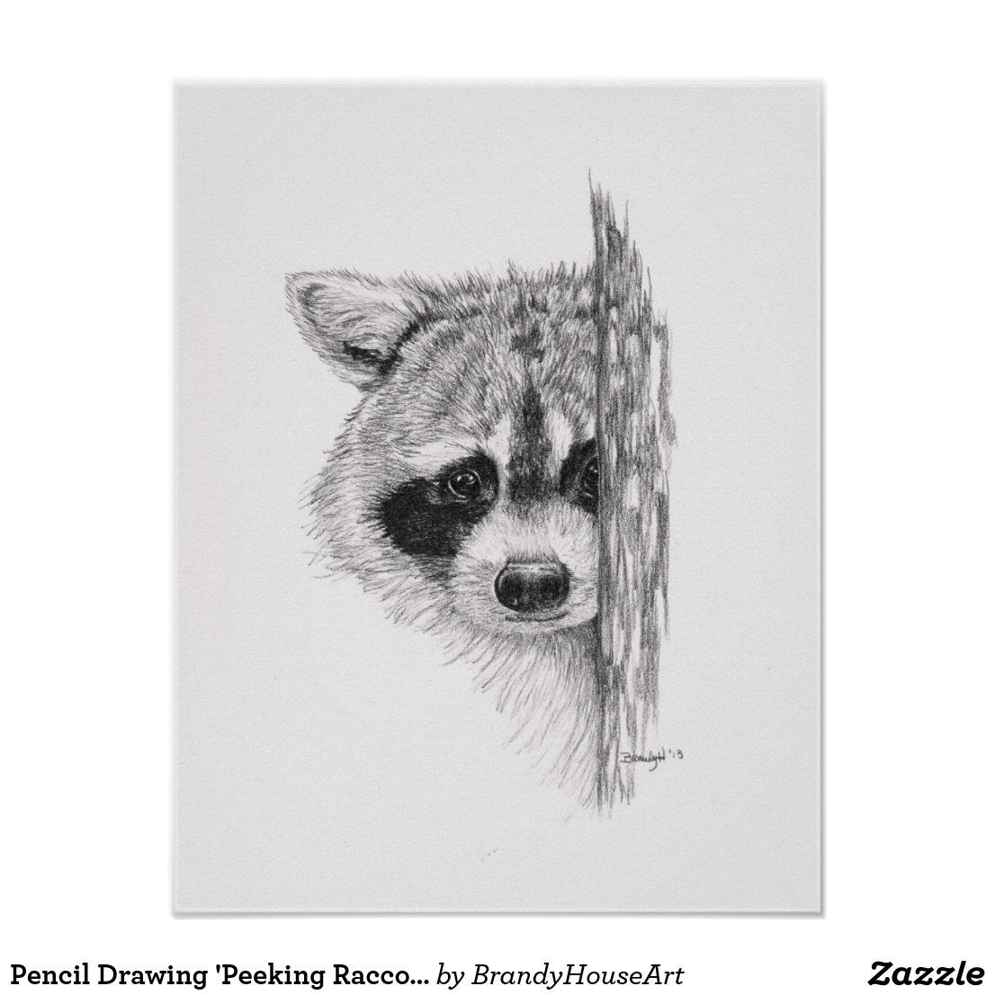 28++ Raccoon face coloring page ideas in 2021