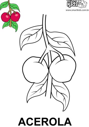 Acerola Frutas Para Colorir Colorir