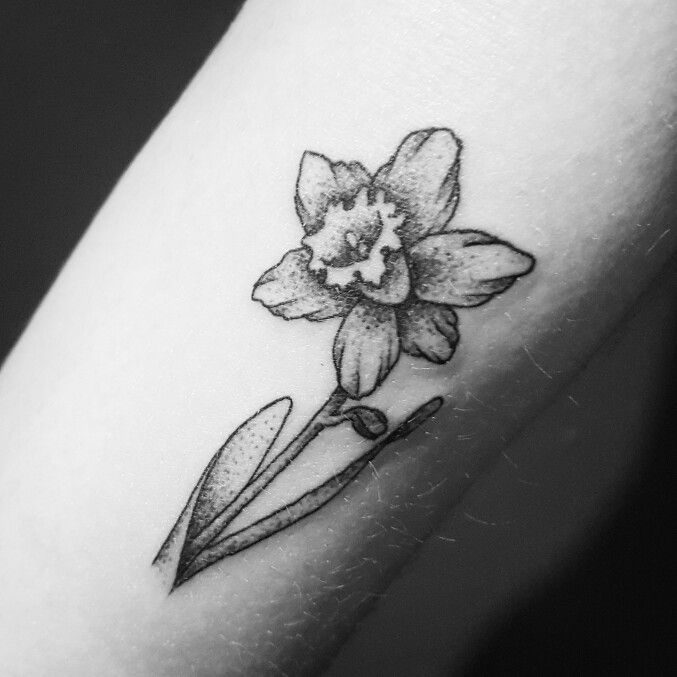 Miniature Botanical Tattoos Daffodil Designed And Created By Fliquet Renouf Body Illustration Daffodil Tattoo Narcissus Flower Tattoos Tattoo Shirts
