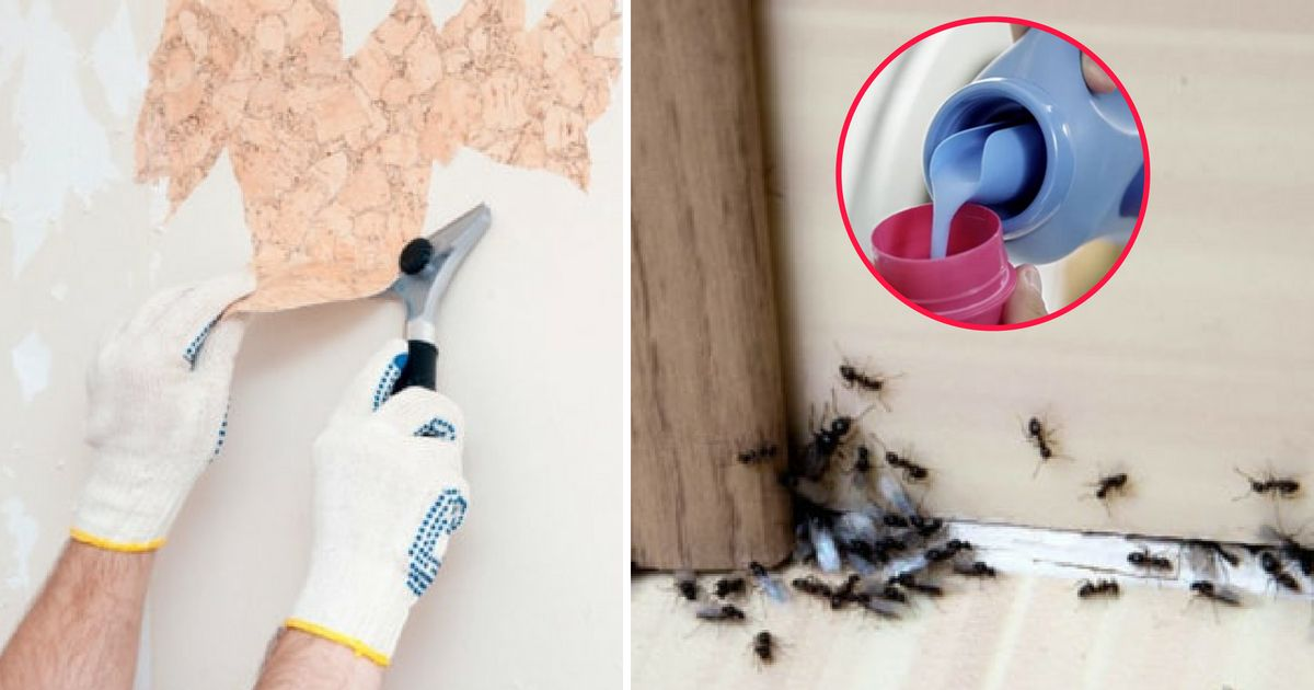 how to use fabric softener to remove wallpaper