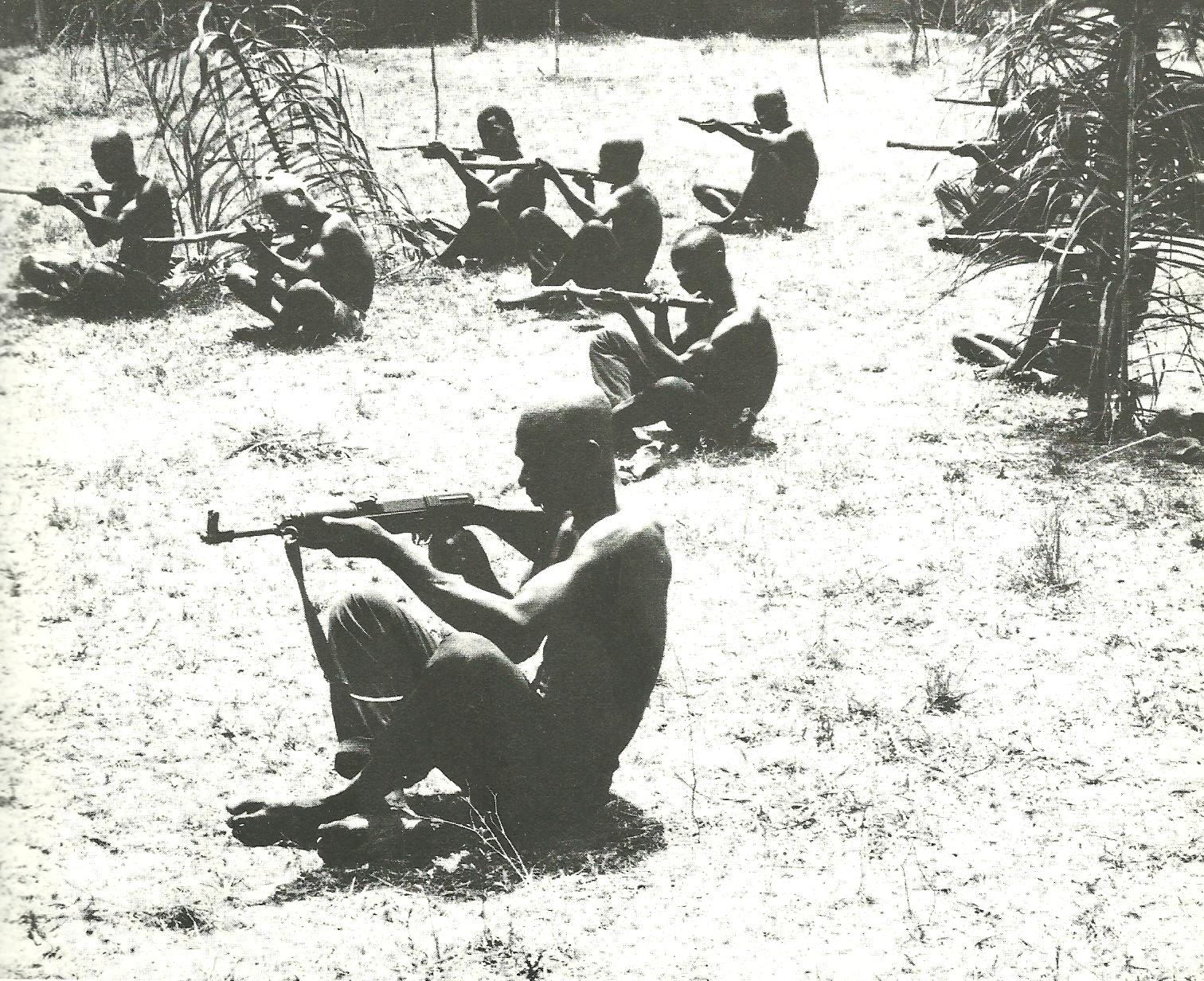 Initially during the Nigerian Civil War the newlyformed Biafran
