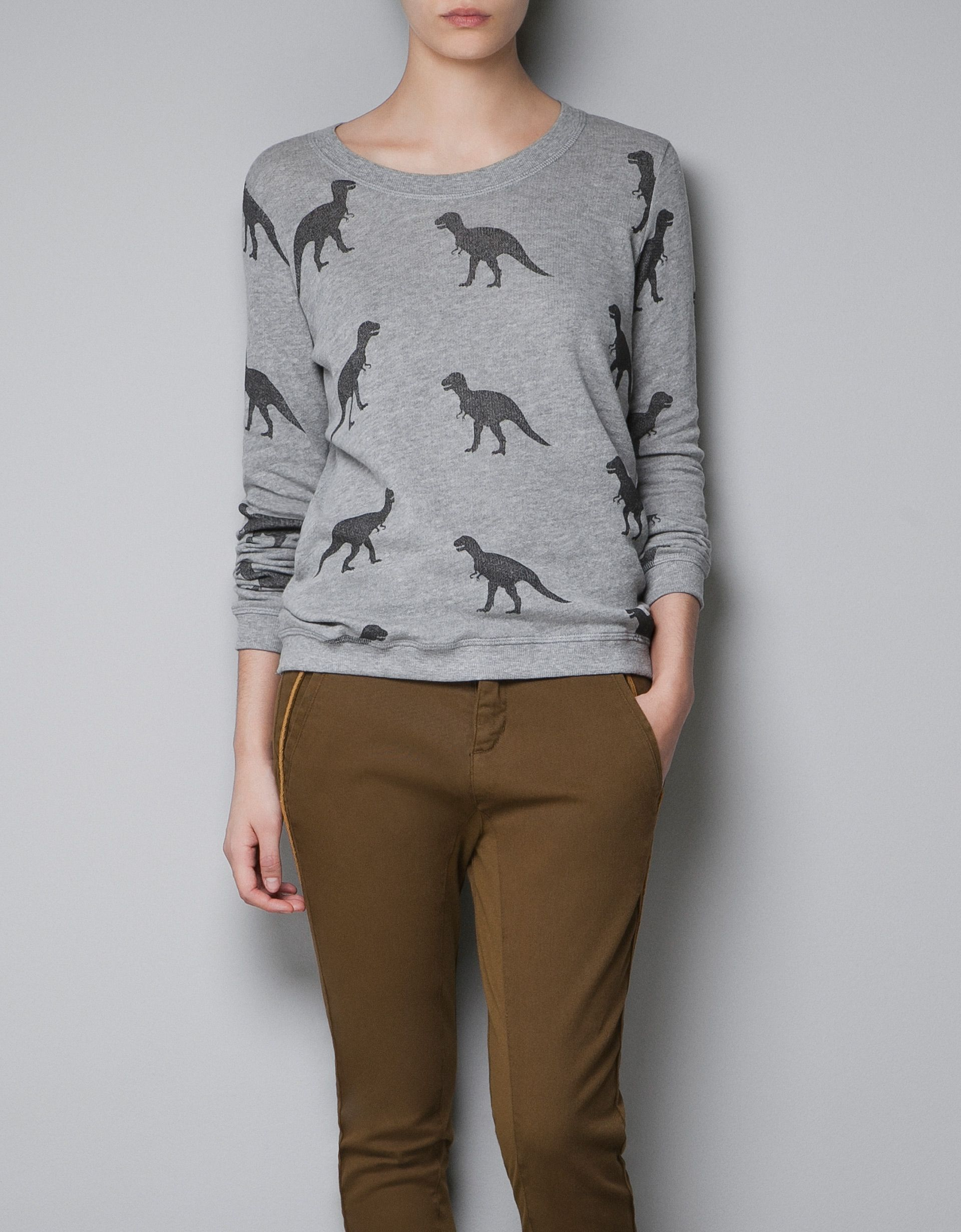 0035dd1e dinosaur sweatshirt by Zara - I can't believe I'm pinning this, but I think  my boys would LOVE to have me wear this one day:-)