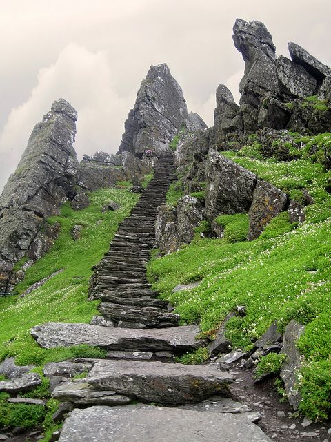 Stairs leading to Skellig Michael Monastery, Ireland -- I need to visit here the next time I go to Ireland!