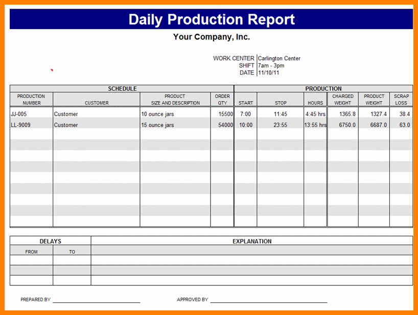 Employee Daily Report Template 1 Professional Templates