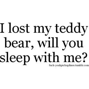 i lost my teddy bear will you sleep with me inappropriate pick up lines