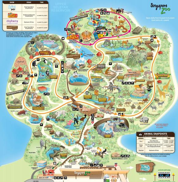 Zhonghua P3 Zoo Trail By Zhonghua Zoo Map Singapore Zoo Zoo