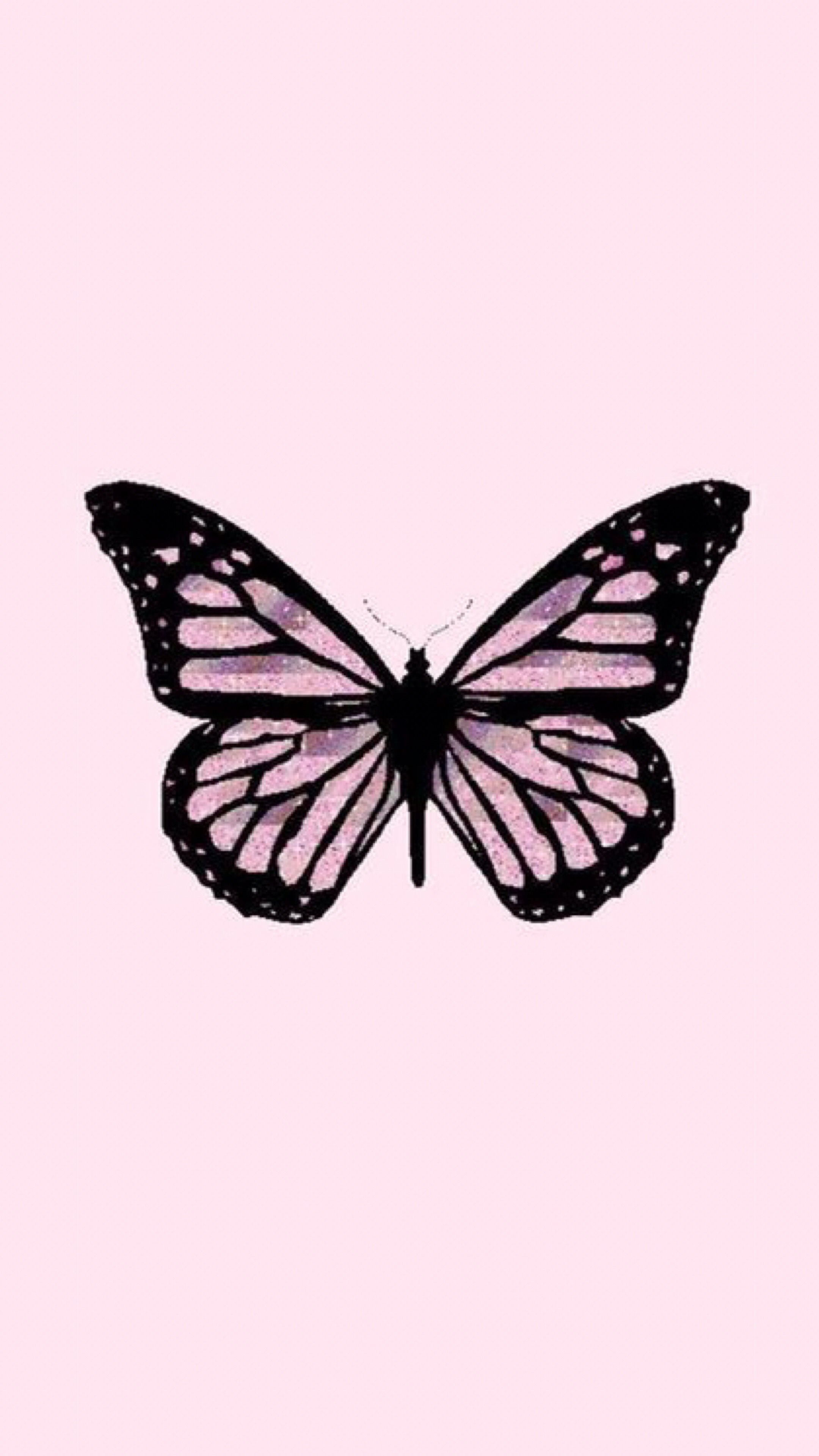 aesthetic trendy wallpaper iphone butterfly