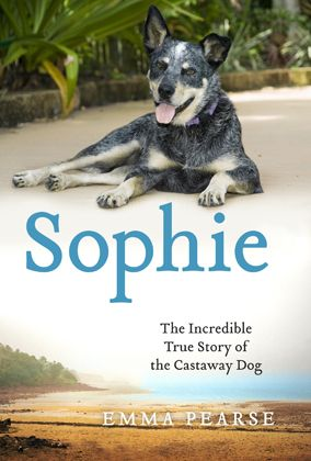 Picture Books About A Dog