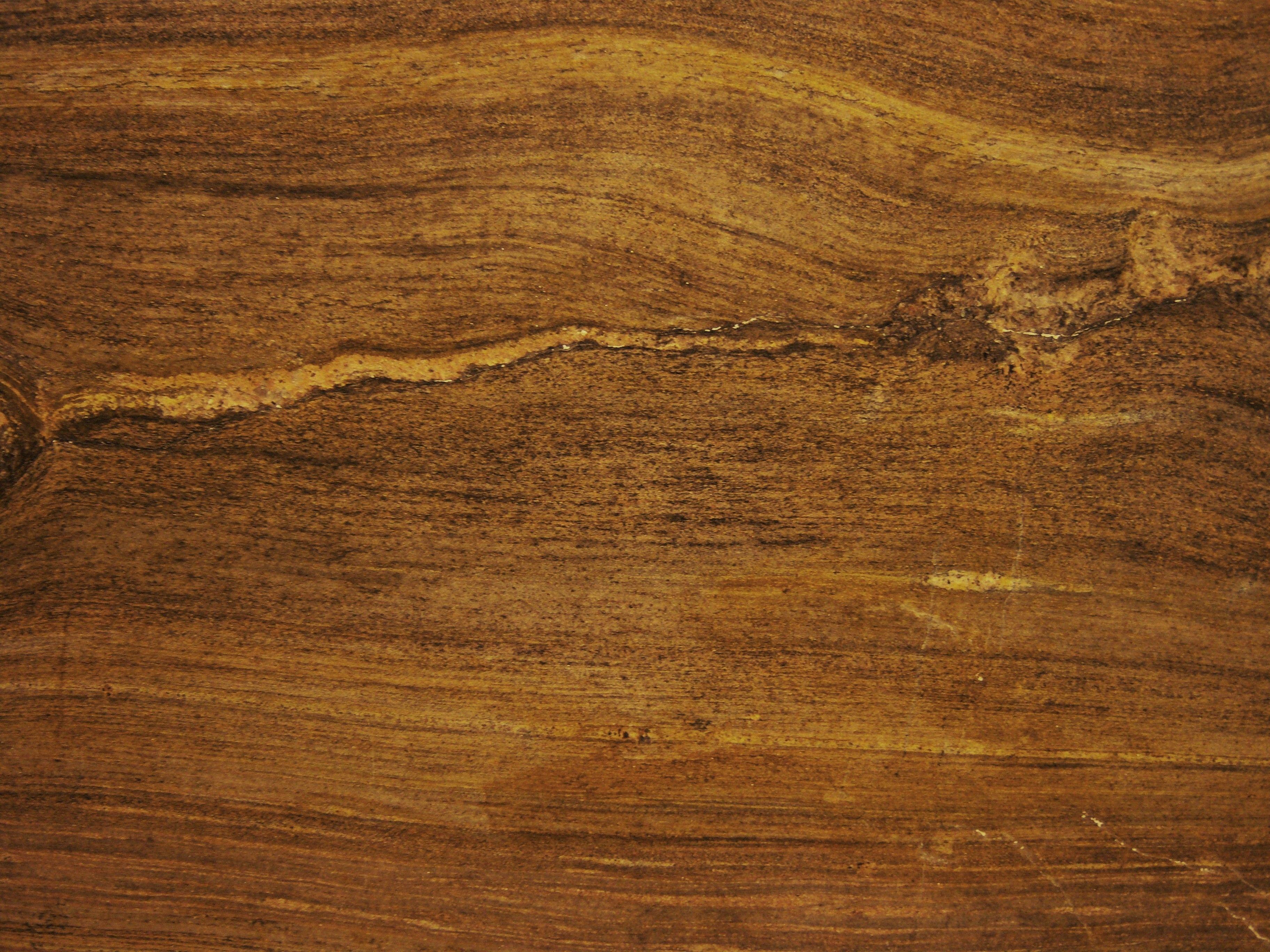 Http Rowanstone Files Wordpress Com 2010 06 Petrified Wood 21 Jpg Petrified Wood Wood Hardwood