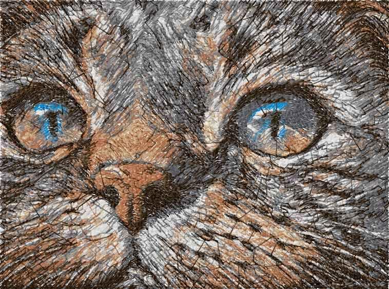 Cat Photo Stitch Free Embroidery Design 17 Photo Stitch Embroidery