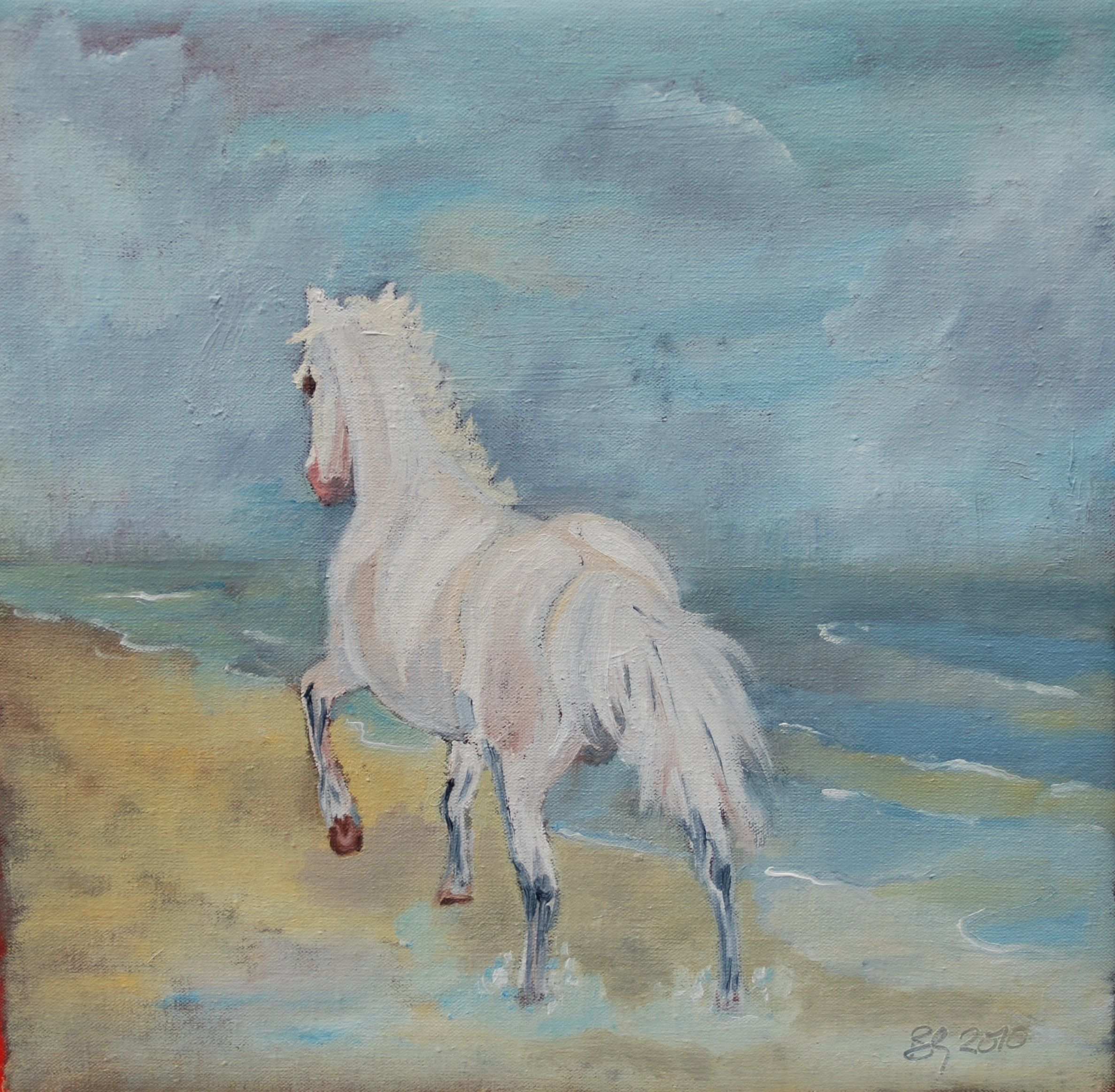 My Welsh Mountain Pony known to us a Ceasar.  oil on canvas © B Galsworthy