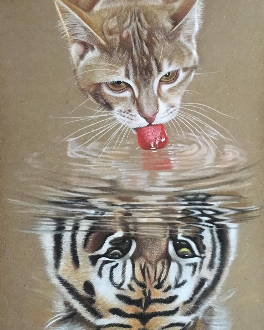 Domestic And Wild Animal Drawings And Paintings Animal Drawings Reflection Art Animals Wild