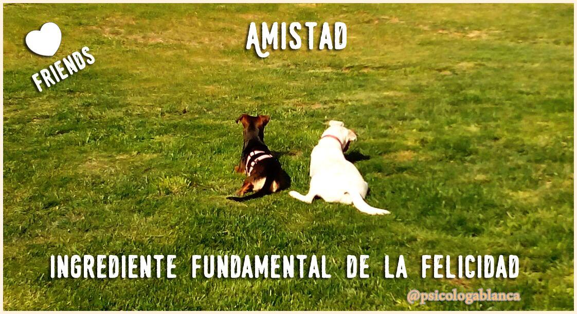 https://www.facebook.com/pages/Blanca-Aguayo-Psic%C3%B3loga-en-Mallorca-y-online/1486550838255248?ref=hl  La felicidad tiene muchas definiciones. Una de ellas es la capacidad para disfrutar de las pequeñas cosas de la vida. Disfrutar de la naturaleza, disfrutar de la amistad, del amor, del trabajo, de tus aficiones, disfrutar de todo lo que quieras y más!