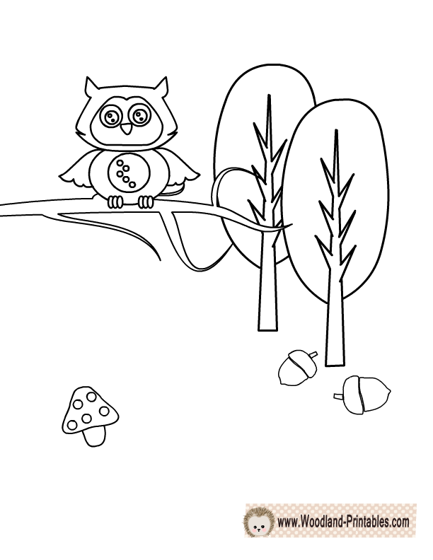 Cute Owl Coloring Page Animal Coloring Pages Coloring Pages Owl Coloring Pages