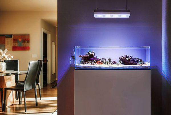 20 modern aquariums for cool interior styles home design and interior aquarilibrium. Black Bedroom Furniture Sets. Home Design Ideas