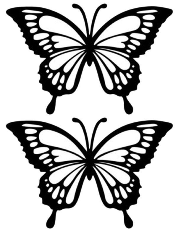 Vector Butterfly Vector Set Mykinglist Com Butterfly Stencil Butterfly Outline Butterfly Drawing