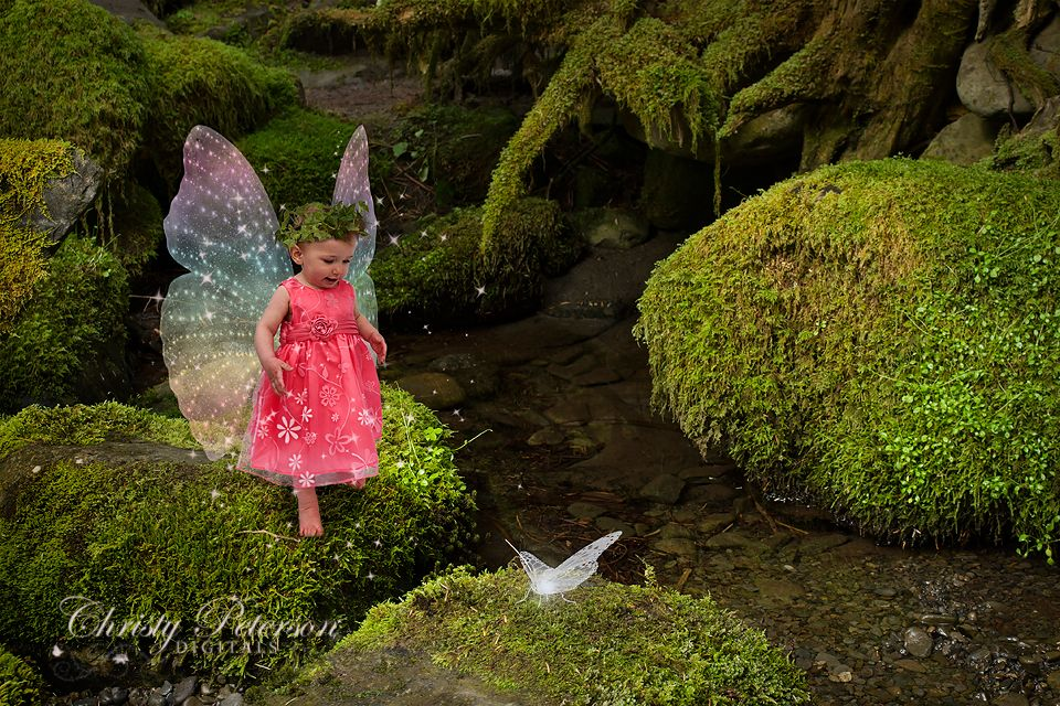 Photoshop Fairy Wing Brushes And Overlays More Examples Art