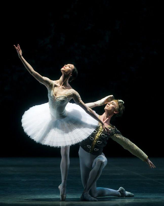 American Ballet Theatre   Ballet: The Best Photographs