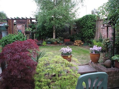 Garden - prior to having the tree removed. - http://www.1pic4u.com/blog/2014/09/28/garden-prior-to-having-the-tree-removed/