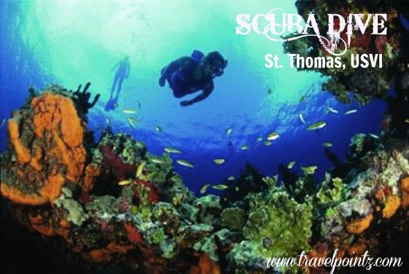Scuba diving with disney at the us virgin islands for