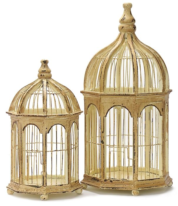 15++ Decorative gold bird cages ideas in 2021