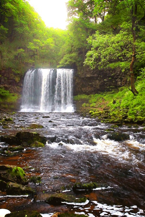 Daily Afternoon Randomness 49 Photos Waterfall Beautiful Photos Of Nature Scenic Waterfall