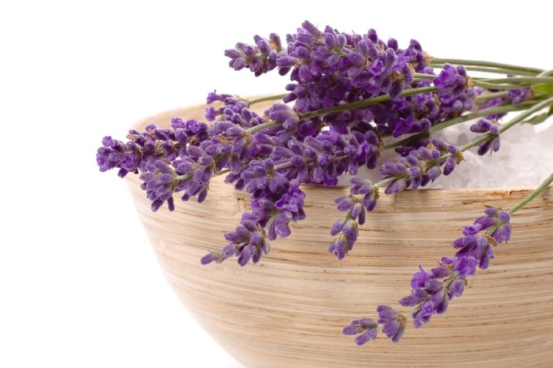 Bring home the relaxation therapy with OdonilAirFreshener Lavender Gel today!