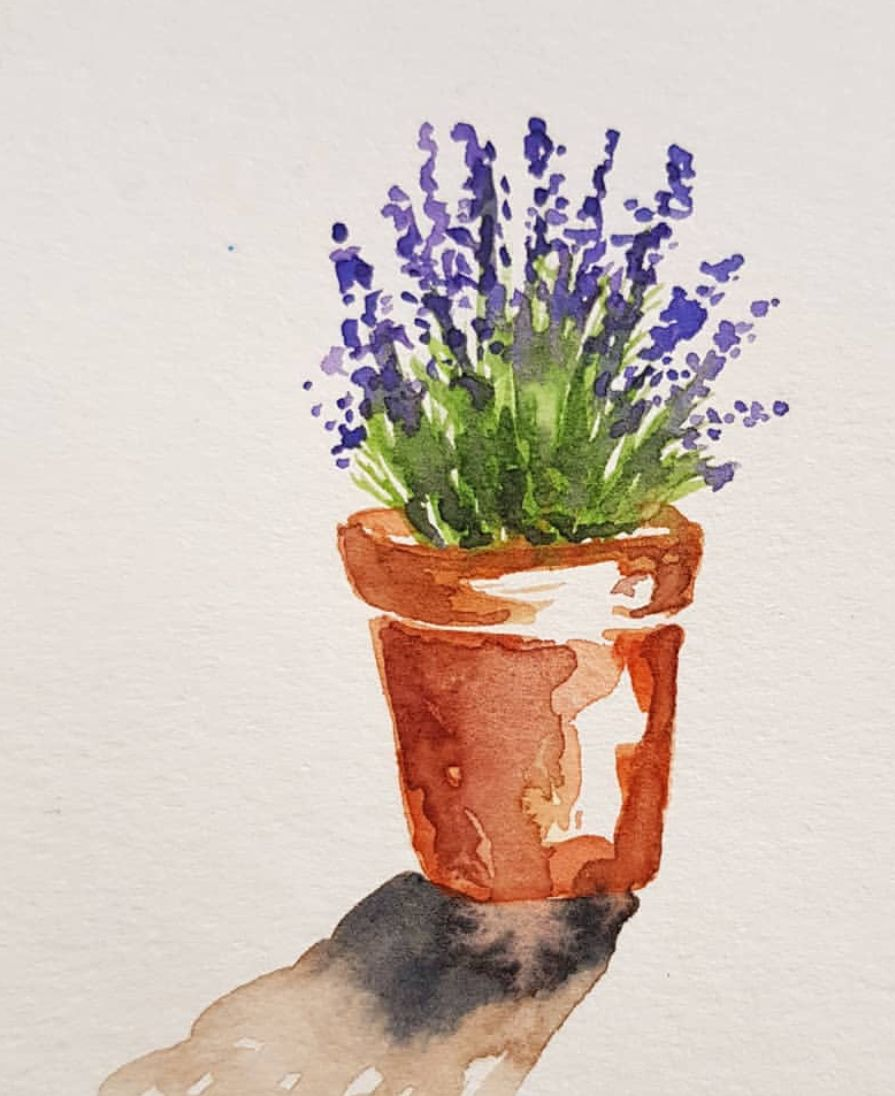 Pot Of Lavender Watercolor Watercolor Flowers Paintings
