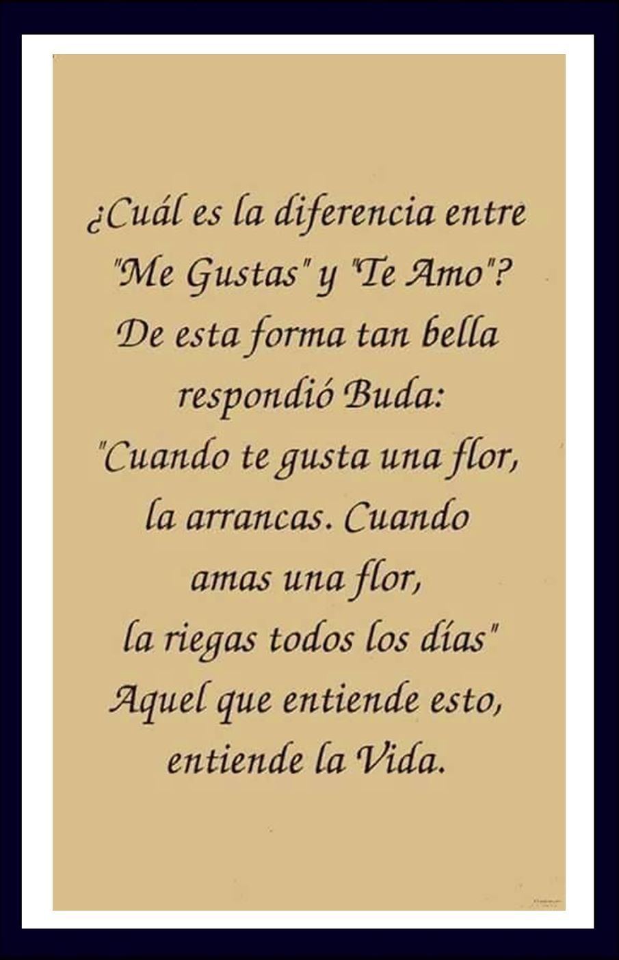 Super Pin by Ramon Gonzalez on Ramon | Pinterest | Spanish quotes and  NU99