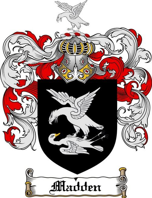 Madden Coat Of Arms Madden Family Crest Family Crest Coat Of Arms Family Shield