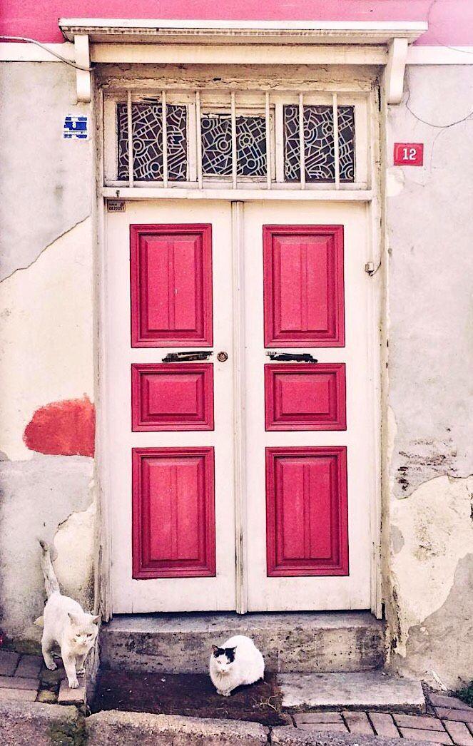 For More Inspo Follow Us On Instagram Dear Blackbird Boutique Www Dearblackbirdboutique Com Au Cool Doors Doors Beautiful Doors