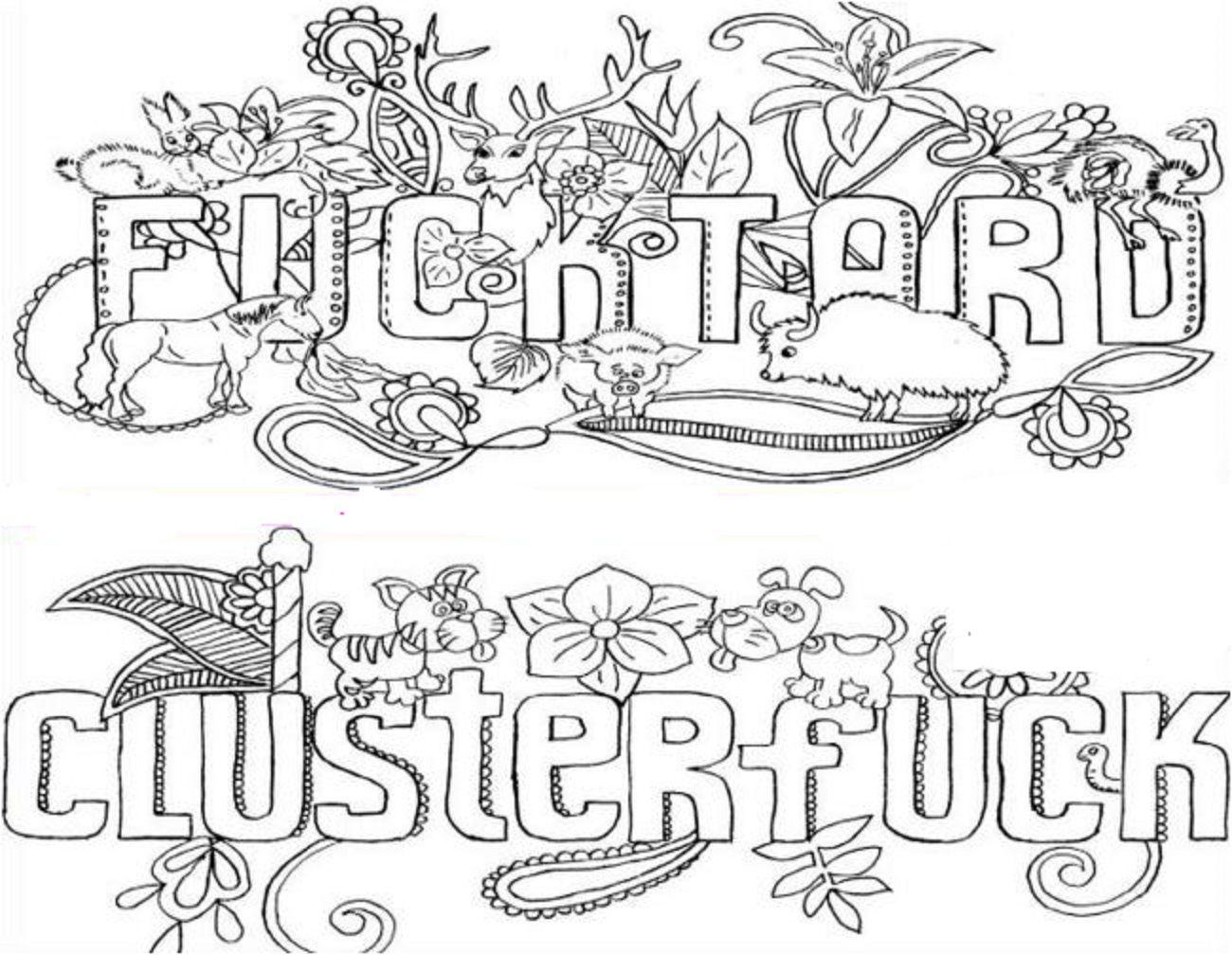 Adults Coloring Book Swear Words Design Fun Patterns Fancy Sweary Stress  Relief