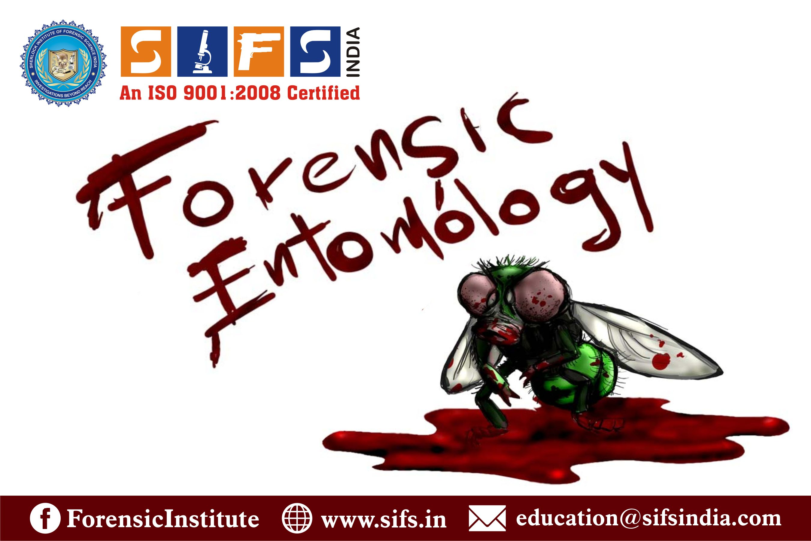 Pin On Forensic Entomology Courses