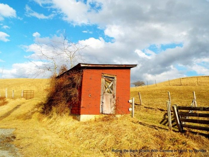 12. The burnt red color adds life and animation to this little abandoned work shed.