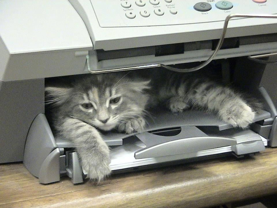 who left the fax