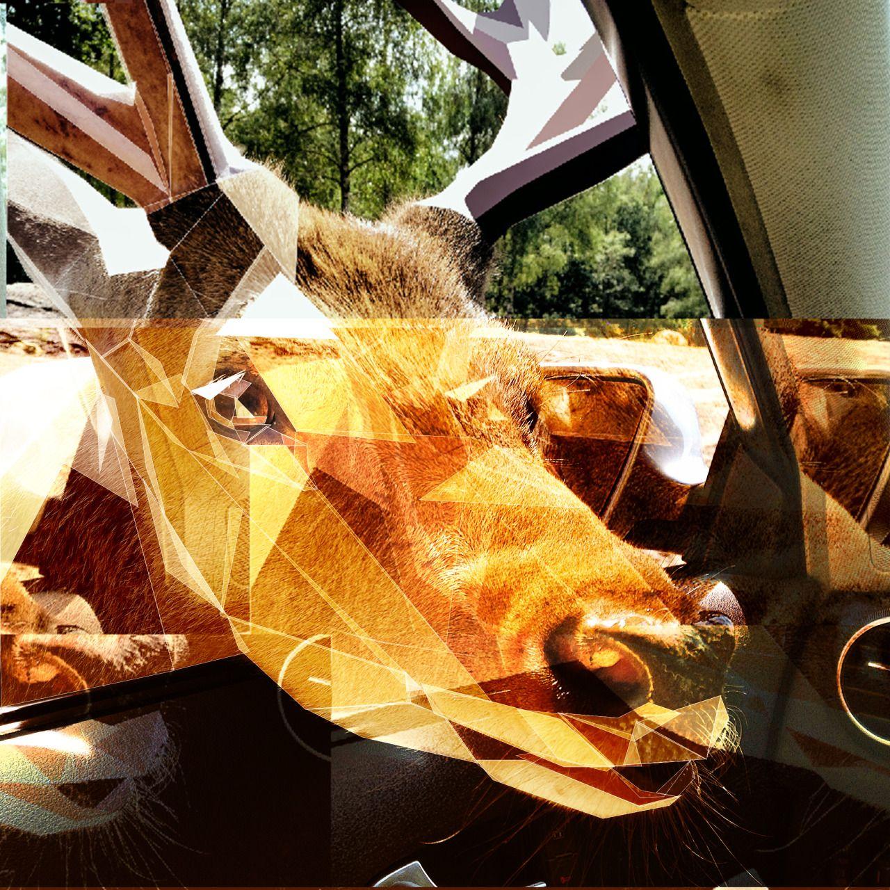Glitch polygon art - Deer