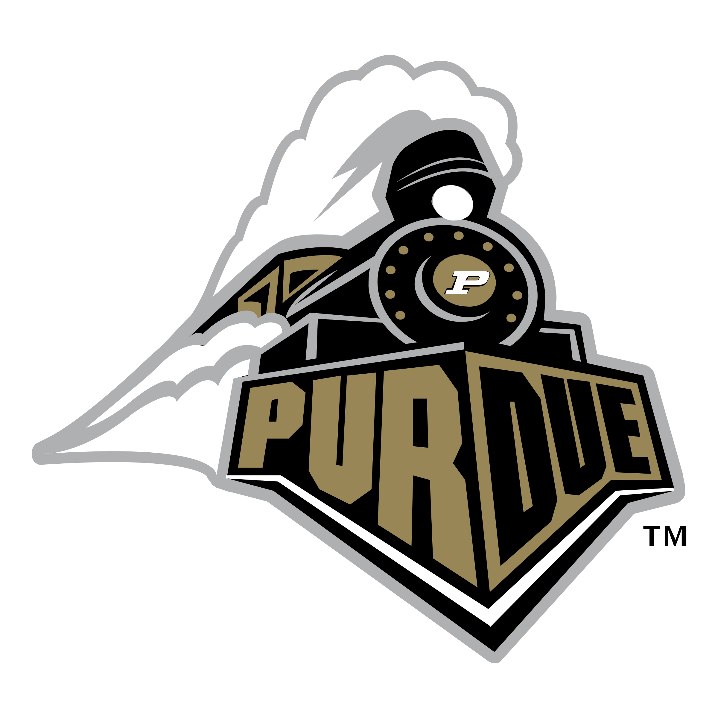 Pin By Janice Anderson On Purdue In 2020 Purdue Logo Purdue Purdue University