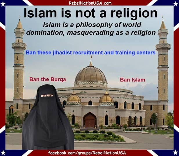 Islam is fucking stupid photo 351