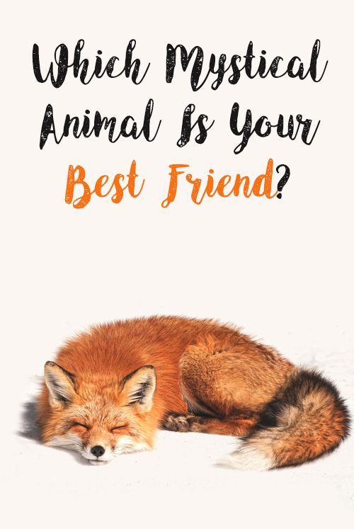 Which Mystical Animal Is Your Best Friend Mystical Animals